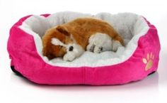 Bedding   The Puppy
