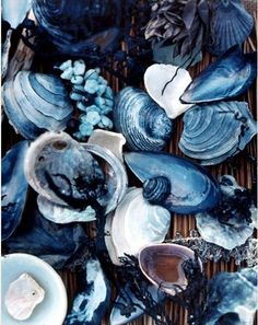painting of shells - monochromatic blue colour scheme. What other colours help to make the blue look lively?