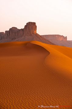 The red sands. Saudi Arabia