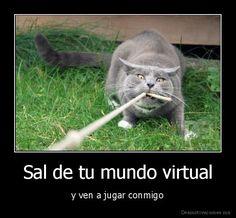 Sal de tu mundo virtual... (mandatos informales irregulares)