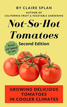Not-So-Hot Tomatoes: Growing Delicious Tomatoes in Cooler Climates - Kindle edition by Splan, Claire. Crafts, Hobbies & Home Kindle eBooks @ Amazon.com. Hobby House, Growing Tomatoes, Edible Garden, Book Gifts, Free Books, Vegetable Garden, Gardening Tips, Book Lovers, Herbs