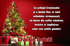 Cu prilejul Crăciunului și a Anului Nou, în toiul colindelor strămoșești, vă dorim din suflet sănătate, fericire și împlinirea celor mai nobile gânduri. Christmas Tree, Holiday Decor, Sewing Shorts, Home Decor, Holidays, Google, Noel, Teal Christmas Tree, Decoration Home
