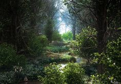 ArtStation - Deep in the woods, Aron Kamolz