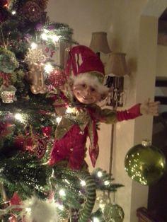 My New Christmas Elf