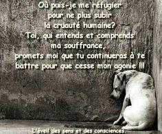 Où puis-je me réfugier pour ne plus subir la cruauté humaine ? Toi, qui entends et comprends ma souffrance, promets-moi que tu continueras à te battre pour que cesse mon agonie.