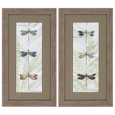 Propac Images Dragonfly Botanical 2 Piece Framed Graphic Art Set