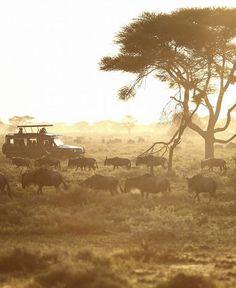 andBeyond Xudum, Botswana