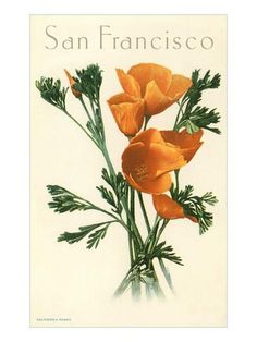 The time to see poppies has arrived! The Antelope Valley California Poppy Reserve is open, sunrise to sunset, through mid-May. California Poppy, San Francisco Art, Living Room Paint, New York Public Library, French Country Decorating, Poppies, Art Prints, Poster
