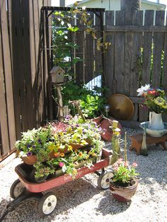Repurposed red wagons made into planters in front of a bed spring trellis fill a back corner of my yard.