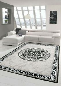 Details About Contemporary Rug Design Rug Oriental Rug With Glitter Yarn Living Room Rug With