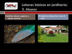 La tercer labor básica para mantener su jardín en un excelente estado es abonar. Combine abono orgánico con abono mineral y abone el césped tres veces al año.
