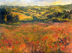 Orange and Red Poppy Field rolling hills by StudioPetiteDesigns, $45.00