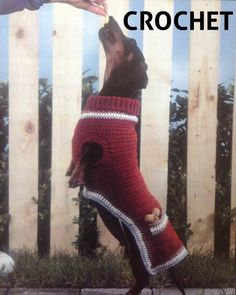 CROCHET DOG KNIT PATTERN SWEATER « CROCHET FREE PATTERNS