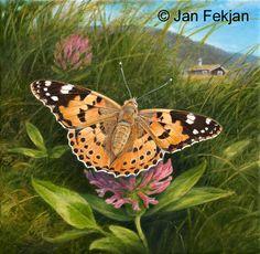 Jan Fekjan: Tistelsommerfugl Living Room Art, Giclee Print, Fine Art, Prints, Artist, Animals, Animales, Salon Art, Animaux