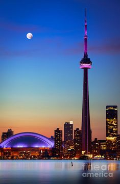 Cn Tower At Dusk by Inge Johnsson - Cn Tower At Dusk Photograph - Cn Tower At Dusk Fine Art Prints and Posters for Sale
