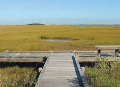 Chappaquiddick Island - Poucha Pond Reservation - Salt Marsh Stroll Trail  This easy walk, best undertaken off-season, when the weather is cool and the biting insects gone, explores a 147-acre reservation perched on the shore of Poucha Pond. The pond is a body of saltwater connected to Cape Poge Bay by a narrow channel that flows under the infamous Chappaquiddick Island dike bridge. http://www.petfriendlymarthasvineyard.com/parks-beaches.html