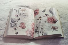 An idea for an art journal - fill some text pages with beautiful things (to you) to turn to when life seems difficult - circumstances may change, but there is still beauty... Your Holy Word fills my soul; as I open it's pages and find Your life within. Page after page, turn after turn, verse after verse and prayer after prayer, You fill me with the richness and goodness of Your truth. As I delve deeply into Your gift to me; I find encouragement, inspiration, conviction (click for more)