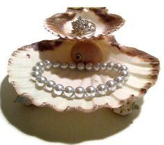 Two tier shell jewelry dish, seashell dish, jewelry bowl, ring dish, jewelry storage, ring holder.  via Etsy.