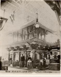 Rice Exhibit - 1893 World's Fair