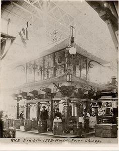 Rice Exhibit - 1893 World's Fair