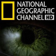 Watch full episodes, specials and documentaries with National Geographic TV channel online. National Geographic Tv Shows, Live Tv Streaming, Cable Channels, Watch Full Episodes, History Channel, Good Movies, Documentaries, Power Couples, Nature Adventure