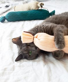 If You Make These DIY Cat Toys, You'll Make Yours the Happiest Kitty on the Planet - juguetes para gato con reciclado - Katzen Diy Cat Toys, Homemade Cat Toys, Dog Toys, Chat Crochet, Kitten Toys, Cat Crafts, Diy Stuffed Animals, Cat Love, Crazy Cats