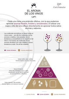 Los aromas del #vino en una #infografía