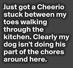 Humor Quotes: Funny Pictures Of The Day - 94 Pics I Smile, Make You Smile, Lol, Thing 1, I Love To Laugh, Thats The Way, Look At You, Funny Cute, Just In Case