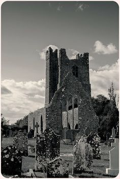 Ruined church of St. Mary - Duleek, Co. Meath