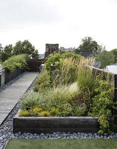 Greening and designing the roof terrace – Practical planting plan for the perfect roof garden - All For Garden Small Space Gardening, Small Garden Design, Garden Spaces, Urban Garden Design, Garden Modern, Modern Fence, Rooftop Terrace Design, Terrace Garden, Rooftop Deck