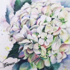 Watercolor by @iglazunova.