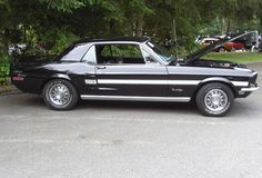 1968 gt/cs mustangs - - Yahoo Image Search Results