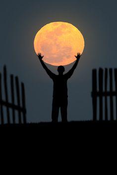 I'll Bring You the Moon