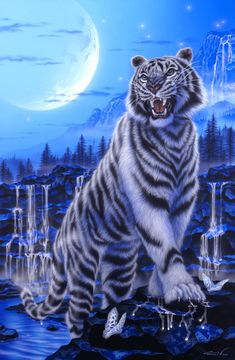White tiger - Painting Art by Kentaro Nishino - Nature Art & Wildlife Art - Airbrushed Wildlife Art. Tiger Images, Tiger Pictures, Tiger Wallpaper, Animal Wallpaper, Beautiful Wolves, Animals Beautiful, Animals And Pets, Cute Animals, Tiger Painting
