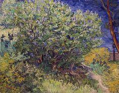 Van Gogh . Lilac Bush.