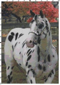 Cross Stitch Pattern Black Leopard by theelegantstitchery on Etsy