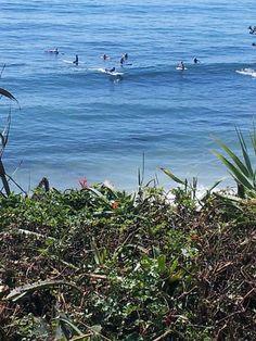Surfers at Thalia Street, Laguna Beach, ca Laura Baldwin Henkels