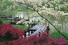 Japanse wandelpaden lopen nooit in een rechte lijn. De Japanse wandelpaden bevatten altijd bochten, waardoor het een soort kronkelpad word.