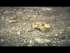 """Cannes lion 12 - Gold Promo & Activation - Pedigree """"Adoption Drive"""" Unrescued"""