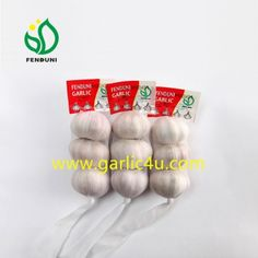 Your own label on mesh bag is available! How To Store Garlic, Fresh Garlic, Small Bags, Packing, Label, Mesh, China, Bag Packaging, Small Sized Bags