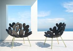 Designed by Marcantonio Raimondi Malerba, one of the most promising young designers around, Filicudi Chair is produced by the super fun brand Qeeboo. Interior Design Blogs, Piano, Cactus Leaves, Mediterranean Plants, Garden Studio, Outdoor Settings, Chairs For Sale, Big Houses, Love At First Sight