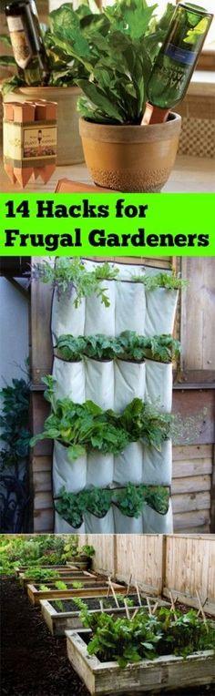 14 Hacks for Frugal Gardener   Bless My Weeds