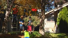 For the ultimate thrill ride in your own backyard, all you need is two sturdy trees and one of our ziplines. Outdoor Toys, Outdoor Decor, Ireland, Entertaining, Activities, Night, World, Youtube, Young Boys