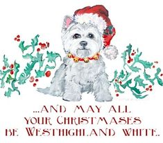 Westhighland White Christmas Dog