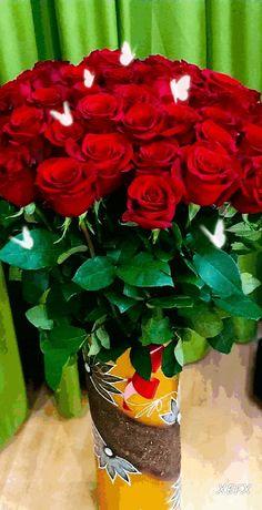 с помощью GIFER Wallpaper Nature Flowers, Rose Flower Wallpaper, Flower Background Wallpaper, Beautiful Flowers Wallpapers, Beautiful Bouquet Of Flowers, Amazing Flowers, Love Flowers, Beautiful Roses, Rose Flower Photos