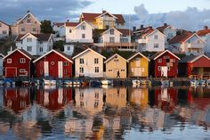 Sweden& pretty Bohuslan coast is a real fjord fiesta Norway House, House By The Sea, Hygge, West Coast, Sweden, Scandinavian, Island, Mansions, House Styles