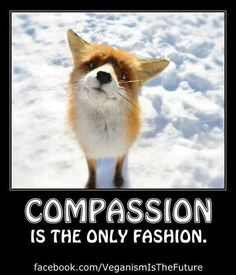 People with compassion don't wear fur.