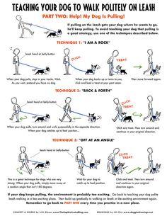 Useful Dog Obedience Training Tips – Dog Training Background Dog, Dog Hacks, Dog Training Tips, Potty Training, Training Classes, Pitbull Training, Puppy Leash Training, Agility Training, Obedience Training For Dogs