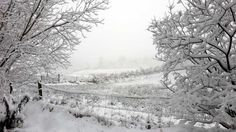 Snow in Leitrim, late Feb 2016 About Me Blog, Easter, Snow, Pictures, Outdoor, Photos, Outdoors, Easter Activities, Outdoor Games