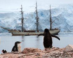 Port Lockroy, Antarctica | Flickr - Photo Sharing!